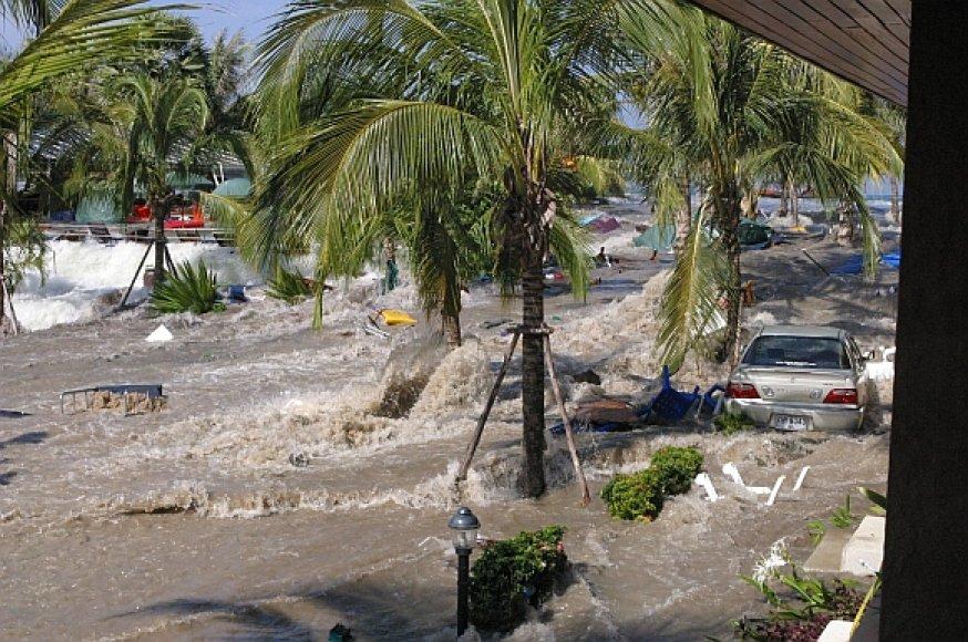 2004-aisiais cunamis Pietryčių Azijoje pražudė dešimtis tūkstančių žmonių.