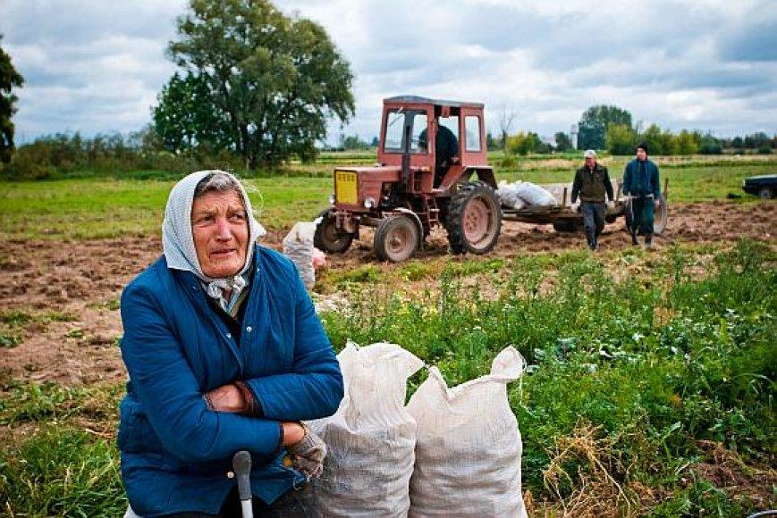 Moterų padėtis ES darbo rinkoje vis dar yra blogesnė nei vyrų.