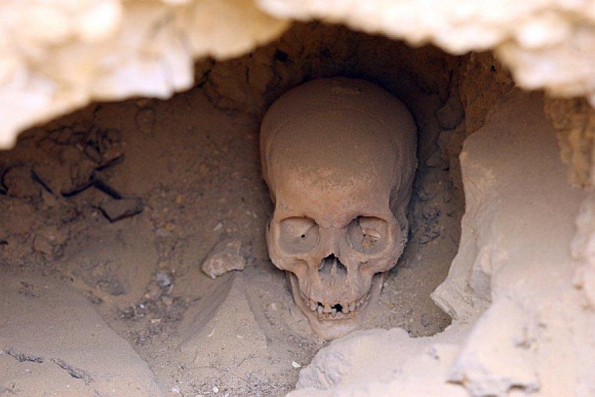Žmogaus kaukolė