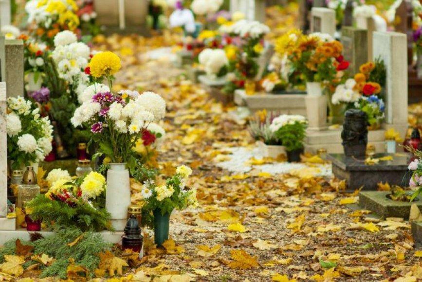 Kokios gėlės labiausiai tinka Vėlinėms?