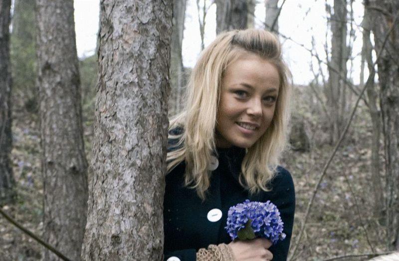 Foto naujienai: Vilija Pilipaitytė-Mia - į mišką – žibuoklių!