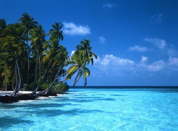 Scanpix nuotr./Maldyvų salos