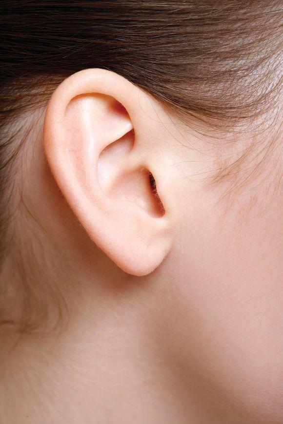 Klausa ir klausos netekimas, kaip veikia ausys