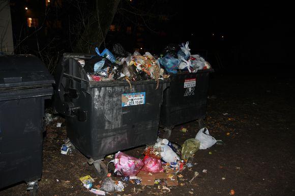 Tvirtinama, kad atliekomis, kurios yra aplink konteinerius, turi pasirūpinti atliekas vežančios įmonės.