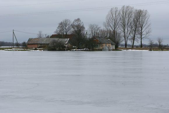 Kasmet Šilutės rajone kylantis potvynis apglėbia daugybę sodybų.