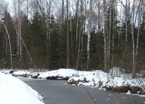 Žiemą upeliuose tyko pavojai, ypač tėvų neprižiūrimų mažamečių.