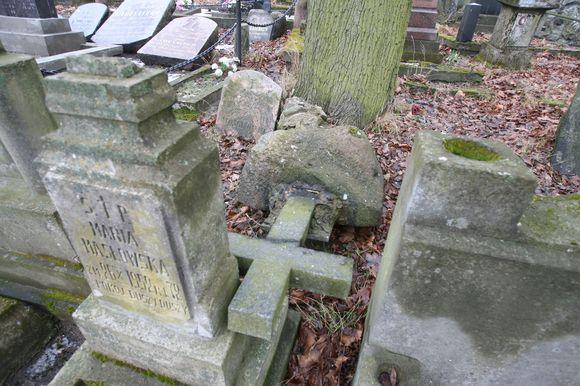 Į apleistas Bernardinų kapines jau ne pirmą kartą įsisuka kryžius vartantys vandalai.