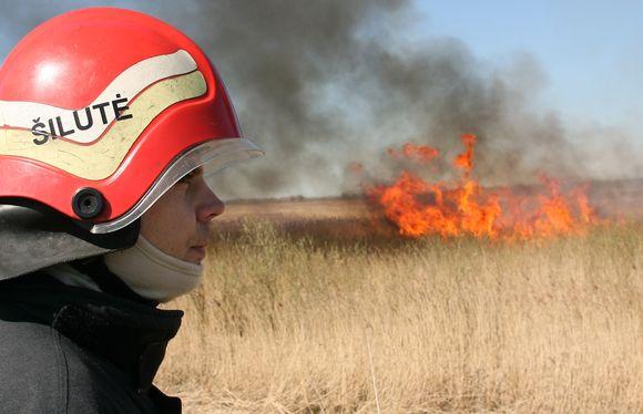 Pamario krašte siautėjusias liepsnas tramdė ugniagesiai.