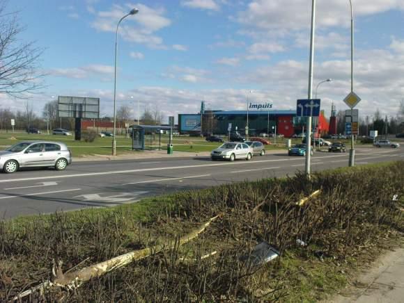 """""""Audi"""" išskriejo iš kelio netoli Buivydiškių ir Ozo gatvių sankryžos."""