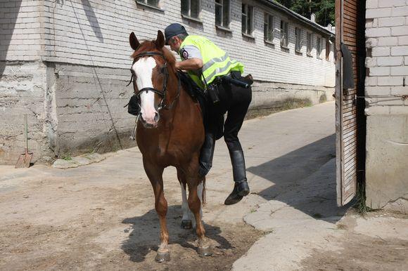 Žirgai suteikia pareigūnams daugiau mobilumo ir galimybę kontroliuoti sunkiai automobiliais privažiuojamas teritorijas.