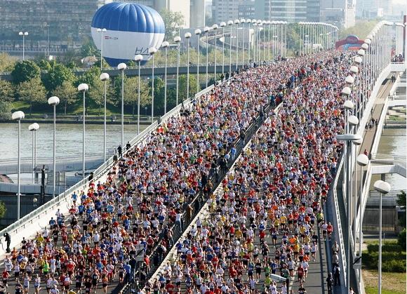 Vienos maratonnas