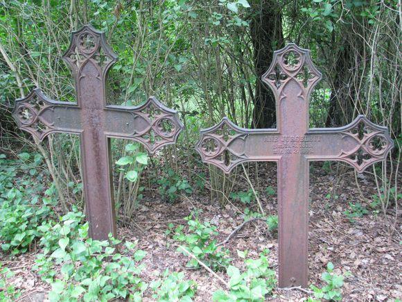 Pasieniečiai tvarkė apleistas kapines.