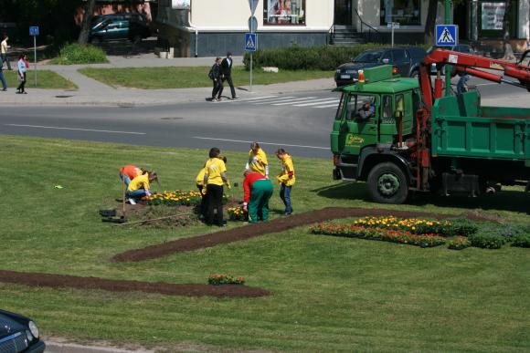 Šypseną simbolizuojantys Klaipėdos logotipai gėlėmis apsodinami jau trečius metus.