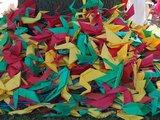 Organizatorių nuotr./Norfolko lietuviai Lietuvos tūkstantmečiui padovanojo 1000 trispalvių gervių.