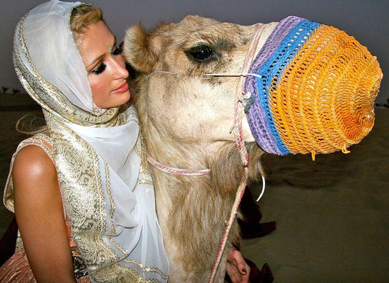Paris Hilton su kupranugariu.