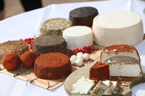 Ožkos pieno sūriai