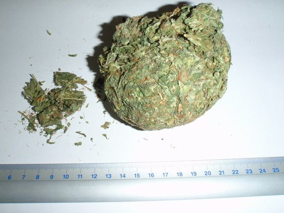 Sulaikytieji įtariami narkotikų platinimu