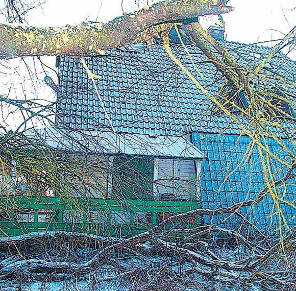 """""""Tulpinių"""" vilos apsaugai greitai bus išleista 100 tūkst. litų."""