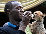 Reuters/Scanpix nuotr./Usainas Boltas su gepardo jaunikliu