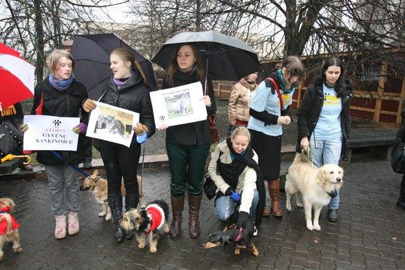 """Ketvirtadienį Vilniuje surengta pilietinė akcija """"Smurtui prieš gyvūnus – Ne!""""."""