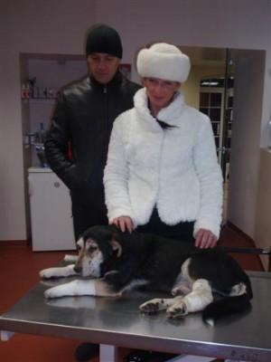 Naujieji šuns Beno šeimininkai