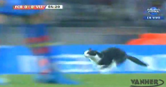"""Aikštelėje iš kažkur atsidūrusi juoda katė prajuokino rungtynes stebėjusius žiūrovus, tačiau laimės """"Barcelona"""" ekipai neatnešė"""