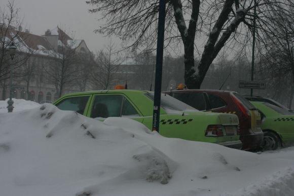 J.Andriejauskaitės nuotr./Kalnai sniego.
