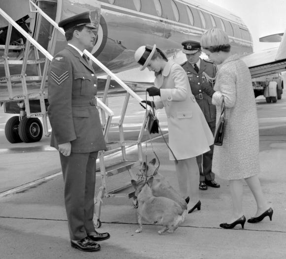Karalienė Elžbieta II ir jos duktė  princesė Anne su savo korgiais lipa į lėktuvą. (1969 m. nuotrauka)
