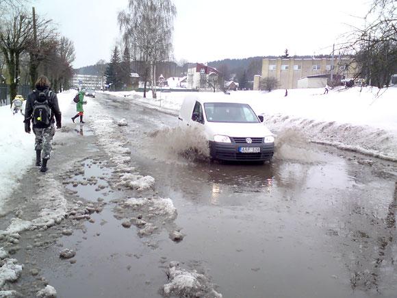 Patvinusi Žalioji g. Vilniuje