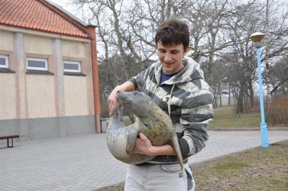 Jūrų muziejaus nuotr./Juodkrantėje rastas ruoniukas.
