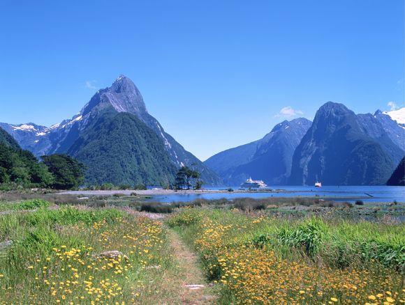 Scanpix nuotr./Naujoji Zelandija