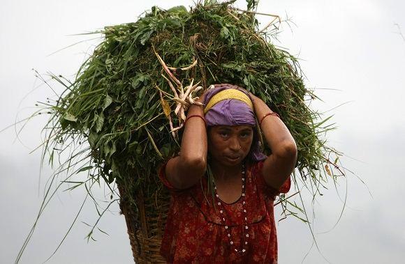 Scanpix nuotr./Nepalas  viena prasčiausių vietų gyventi moterims