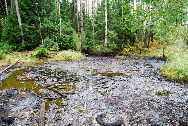 """Gyventojai miške Kretingos rajone aptiko didelį naftos produktų """"ežerą""""."""