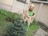 """G.Kubiliūtės nuotr./15min/Viešosios įstaigos """"Garsų imperija"""" direktorė A.Stonkutė sumanė kartu su iniciatyviais klaipėdiečiais pasodinti eglutę."""