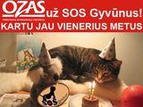"""""""SOS gyvūnų"""" nuotr./""""SOS gyvūnų"""" ir """"Ozo"""" bendradarbiavimas tęsiasi jau metus."""