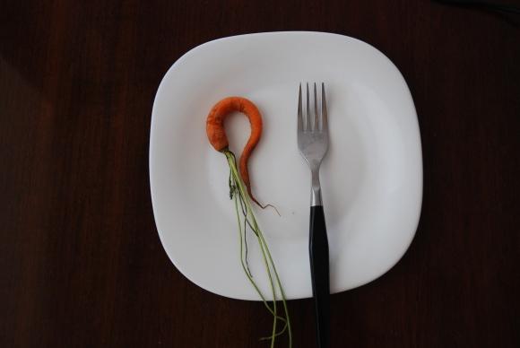 Ekologija, sveikas maistas: ar visada žinome, ką valgome?