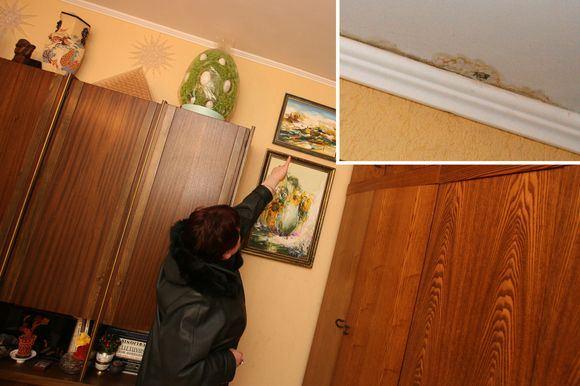Eriko Ovčarenko/15min.lt nuotr./Pro neseniai suremontuotą stogą į I.Jauniakienės butą sunkiasi vanduo. Moteris per teismus reikalauja, kad brokas būtų iataisytas bendrijos lėaomis.