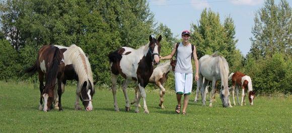 P.Vadiaio nuotr./Vasarą, kai aunims bėgioti per karata, lankytojai gali pajodinėti žirgais