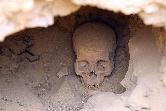 Žaliakalnyje rasta kaukolė atiduota ištirti