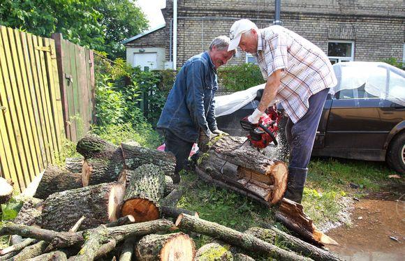 Sostinėje – darbymetis tvarkant nuvirtusius medžius.