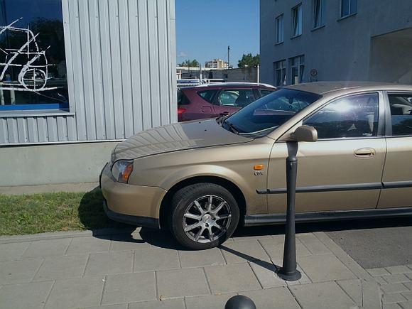 15min.lt skaitytojo nuotr./Chevrolet Evanda, pastatytas ant žolytės