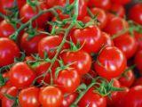 123rf.com nuotr. /`iems nesaldiems vieno kąsnio pyragėliams labiausiai tiks vynuoginiai pomidorai.