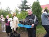 Būk mano draugas nuotr./Sodų gyventojai su beglobiais gyvūnėliais eilėje juos sterilizuoti