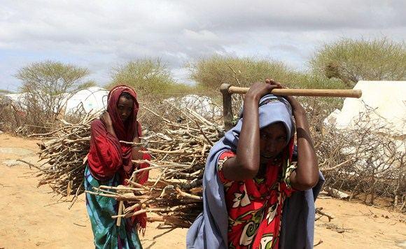 Scanpix nuotr./Dadabo pabėgėlių stovykla
