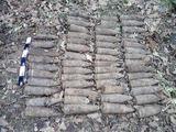 Telšių policijos nuotr./Miške rasti sprogmenys