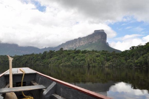 Greitgrisim.lt nuotr./Uola iakilusi Venesuelos džiunglėse