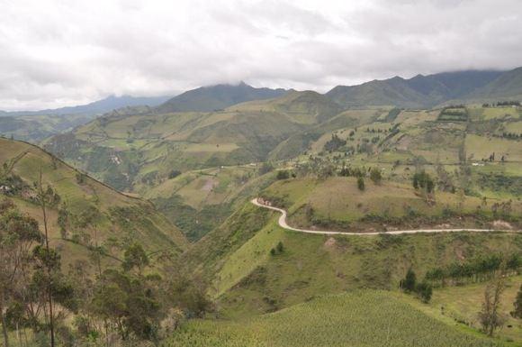 Greitgrisim.lt nuotr./Ekvadoro kalnų vazdai