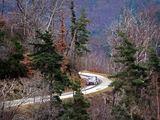 AFP/Scanpix nuotr./WRC. Monte Karlo ralis