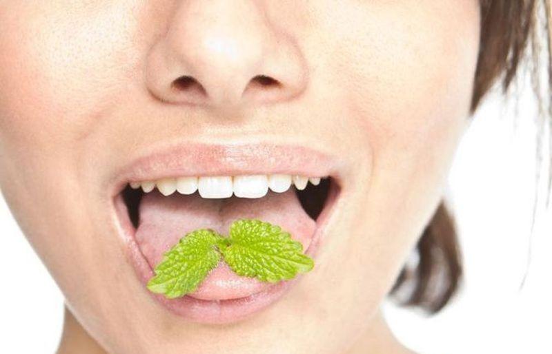 Gaivus burnos kvapas