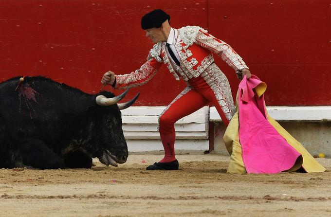 AFP/Scanpix nuotr./Festivalio akimirka